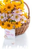 Blumenstrauß von den gelben großen Gänseblümchen lokalisiert auf Weiß Stockbilder