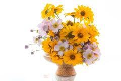 Blumenstrauß von den gelben großen Gänseblümchen lokalisiert auf Weiß Lizenzfreies Stockbild