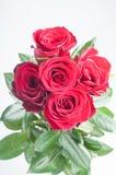 Blumenstrauß von den roten Rosen Stockfotografie