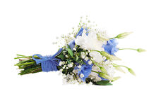 Blumenstrauß von den weißen Blumen lizenzfreies stockfoto