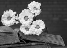 Blumenstrauß von den weißen Blumen, die auf zwei alten Büchern mit verwischt liegen stockfotos