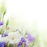 Blumenstrauß von den weißen und rosafarbenen Blumen lizenzfreie stockfotografie