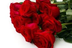 Blumenstrauß von elf roten Rosen auf weißem Hintergrund lizenzfreie stockfotos