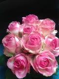 Blumenstrauß von empfindlichen rosa Rosen am Feiertag Stockfotos