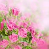 Blumenstrauß von empfindlichen Rosen, mit Blumen Stockfoto