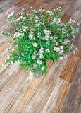 Blumenstrauß von Feldblumen Lizenzfreies Stockfoto