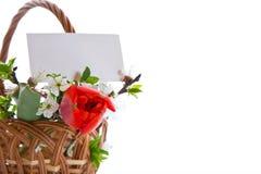Blumenstrauß von Frühlingsblumen Stockfotografie