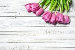 Blumenstrauß von Frühlingsrosatulpen stockfotos