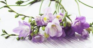 Blumenstrauß von Freesieblumen Stockbild