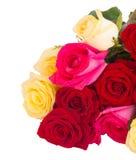 Blumenstrauß von frischen mehrfarbigen Rosen Lizenzfreie Stockbilder