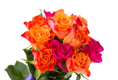 Blumenstrauß von frischen rosa und orange Rosen Lizenzfreies Stockfoto
