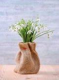 Blumenstrauß von frischen Schneeglöckchen blüht in einem Sack auf hölzernem und Weinlesehintergrund Lizenzfreie Stockfotos