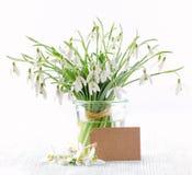 Blumenstrauß von frischen Schneeglöckchen blüht mit einer Papierkarte auf weißem Hintergrund Lizenzfreie Stockbilder