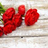 Blumenstrauß von frischen Tulpenblumen des roten Frühlinges Stockfoto