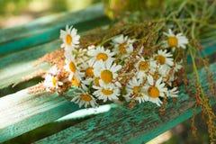 Blumenstrauß von Gänseblümchen auf den Brettern Lizenzfreies Stockbild