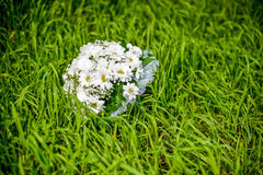 Blumenstrauß von Gänseblümchen auf grünem Gras stockbilder