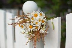 Blumenstrauß von Gänseblümchen auf weißem Bretterzaun Stockbilder