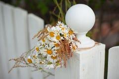 Blumenstrauß von Gänseblümchen auf weißem Bretterzaun Lizenzfreies Stockbild