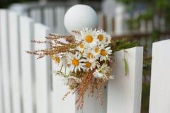 Blumenstrauß von Gänseblümchen auf weißem Bretterzaun Stockfotografie