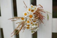 Blumenstrauß von Gänseblümchen auf weißem Bretterzaun Stockfotos