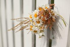 Blumenstrauß von Gänseblümchen auf weißem Bretterzaun Lizenzfreie Stockbilder