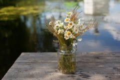Blumenstrauß von Gänseblümchen in einem Glas Stockfoto