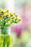 Blumenstrauß von Gänseblümchenblumen Lizenzfreies Stockfoto
