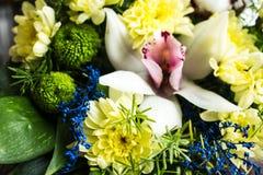 Blumenstrauß von gelben Gänseblümchen Lizenzfreie Stockfotografie