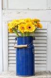 Blumenstrauß von gelben Gerberagänseblümchen im blauen Eimer Stockbild