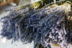 Blumenstrauß von getrocknetem Lavandin stockfotografie