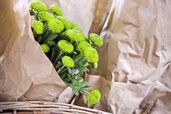 Blumenstrauß von grünen Blumen Lizenzfreie Stockbilder