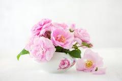 Blumenstrauß von hellrosa Rosen auf hellgrauem Hintergrund Stockbild
