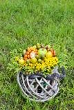 Blumenstrauß von Herbstpflanzen im Weidenkorb Lizenzfreies Stockfoto