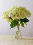 Blumenstrauß von Hortensieblumen Stockfotografie