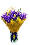 Blumenstrauß von Iris mit Tulpen Lizenzfreie Stockfotografie