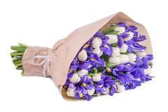 Blumenstrauß von Iris und von Tulpen Lizenzfreies Stockfoto