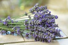 Blumenstrauß von lavanda Blumen lizenzfreie stockfotos