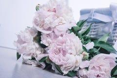 Blumenstrauß von leicht rosa Pfingstrosen auf einem weißen Hintergrund und einem baske stockbild
