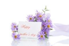 Blumenstrauß von lila Chrysanthemen Stockbilder