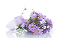Blumenstrauß von lila Chrysanthemen Lizenzfreies Stockbild