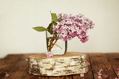 Blumenstrauß von lila Frühlingsblumen auf hölzernem Stockbild