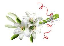 Blumenstrauß von Lilien Lizenzfreie Stockfotografie
