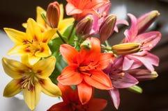 Blumenstrauß von Lilien Lizenzfreies Stockfoto