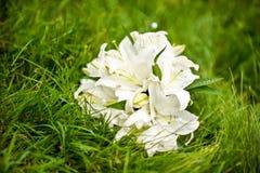 Blumenstrauß von Lilien auf dem Gras Lizenzfreies Stockfoto