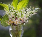Blumenstrauß von Lilien und von Gänseblümchen stockbilder