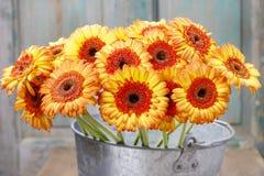 Blumenstrauß von orange Gerberagänseblümchen im silbernen Eimer auf hölzernem Vorsprung Lizenzfreie Stockfotografie