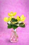 Blumenstrauß von Orchideen Lizenzfreie Stockfotografie