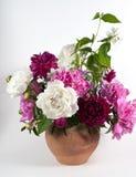 Blumenstrauß von Pfingstrosen Lizenzfreies Stockfoto