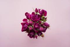 Blumenstrauß von purpurroten Rosen auf einem rosa Hintergrund Lizenzfreie Stockfotografie
