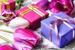 Blumenstrauß von purpurroten Tulpen und von Geschenkbox Lizenzfreie Stockfotografie